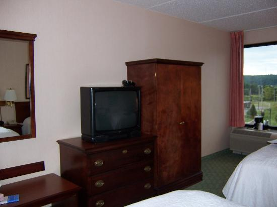 Hampton Inn Philadelphia/Great Valley/Malvern: TV