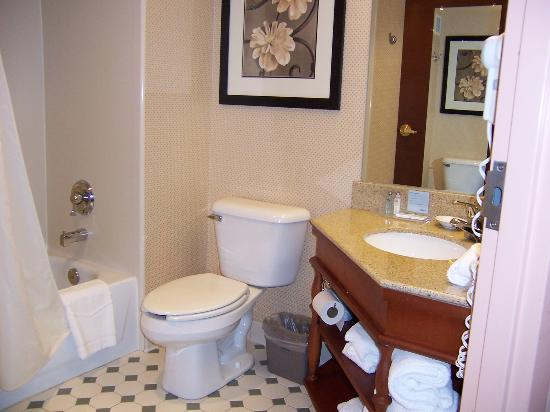 Hampton Inn Philadelphia/Great Valley/Malvern: bathroom