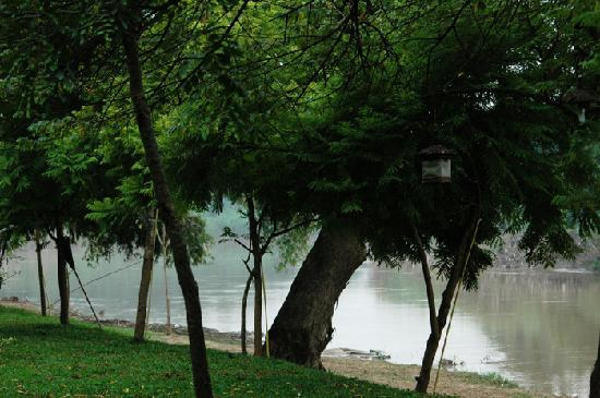 Baan Nam Ping Riverside Village: I was right in front of the Ping River