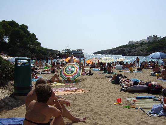 Aparthotel Ferrera Blanca: Cala Esmerelda beach