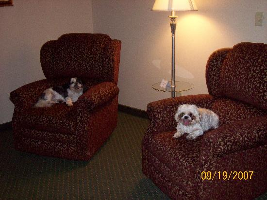 Drury Inn & Suites Columbus Grove City: This is the living room w/2 recliners!