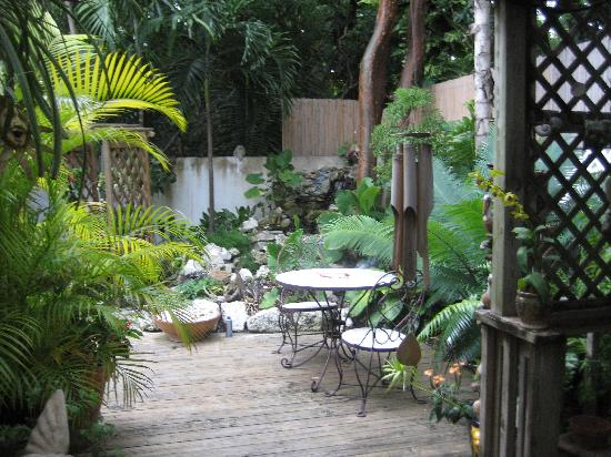Casa Thorn Bed & Breakfast: Gardens and table for breakfest or drinks!