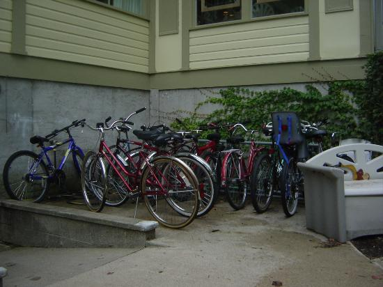 Stafford's Bay View Inn: bikes available for use