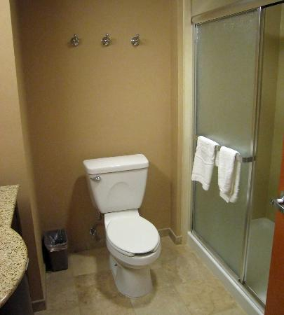 Hampton Inn Nanuet: Room 108 stall shower - no bath tub