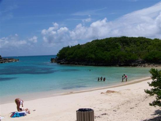 Turtle Cove Beach Picture Of Bermuda