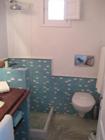 Altana Traditional Houses and Suites: Bathroom in 1BR apt.