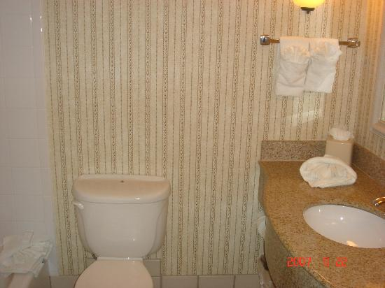 Hilton Garden Inn Minneapolis Eden Prairie: bathroom