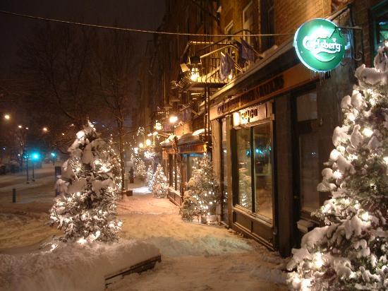 quebec city canada november christmas trees 2006