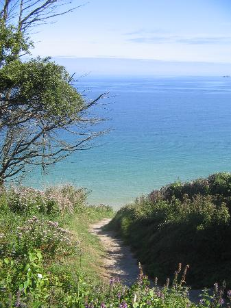 Boskerris Hotel: The trail down to carbis bay near the hotel