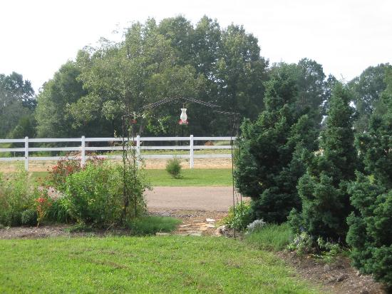 Meadow View Farm Bed and Breakfast: Beautiful Gardens