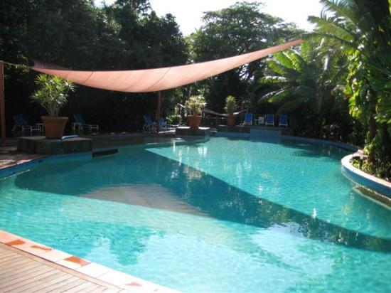 Oasis at Palm Cove: Pool n spa