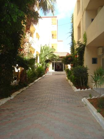 Photo of Phaedra Beach Hotel Malia