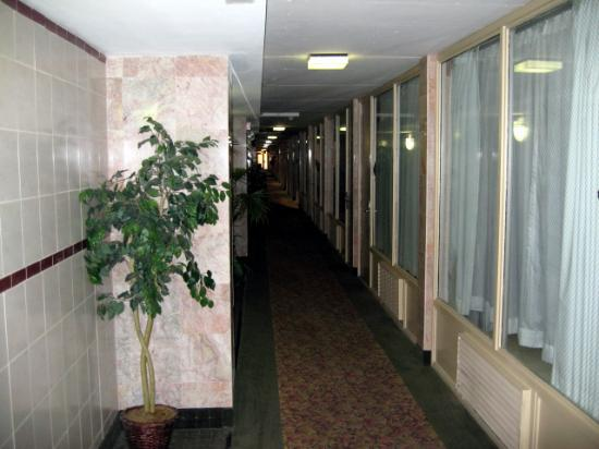 Holiday Inn Chicago North Shore (Skokie): View of dark, hot, dingy hallway.