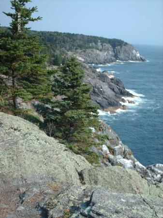 Monhegan Island, เมน: Cliffs at Whitehead