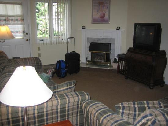Nordic Inn Condominium Resort: living room
