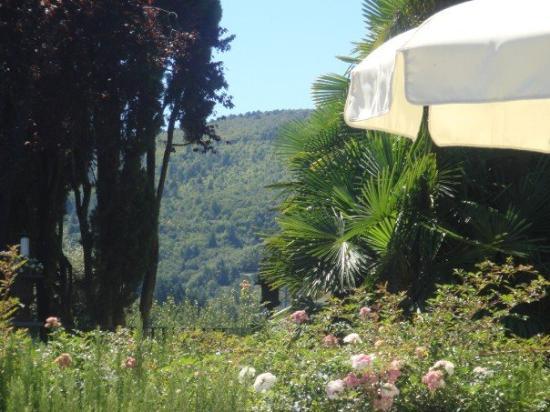 Hotel Villa Sassolini: lavender