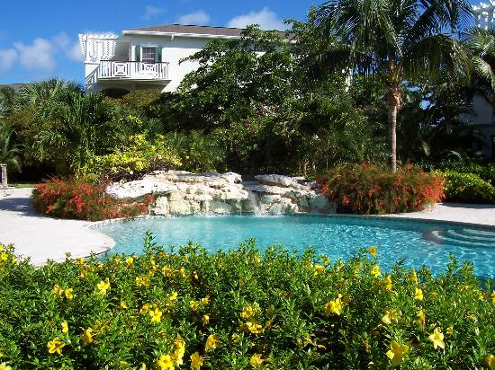 Royal West Indies Resort: pool
