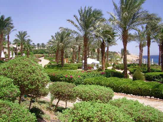 Four Seasons Resort Sharm El Sheikh: colourful scenery everywhere