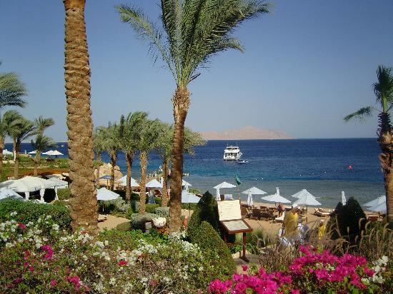 Four Seasons Resort Sharm El Sheikh: view of the beach