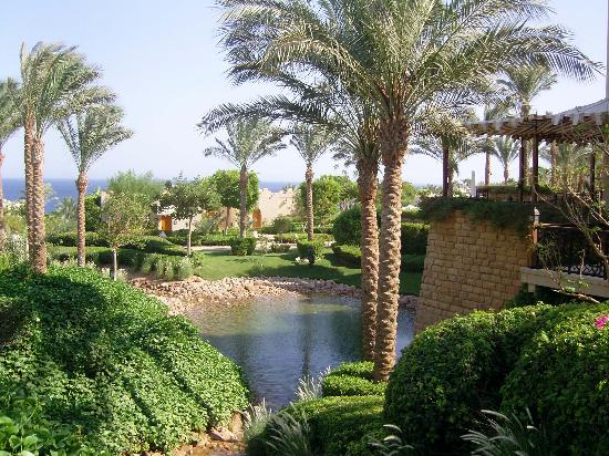 Four Seasons Resort Sharm El Sheikh: view from breakfast