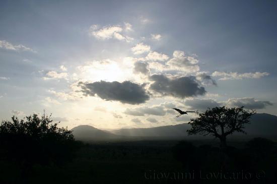 Watamu Beach: Tsavo