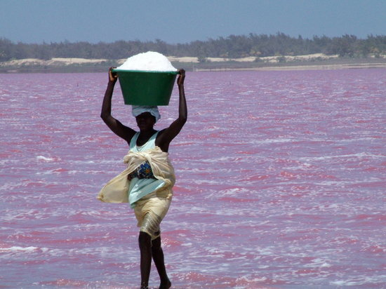 A senegal lady carrying the sat from the lake