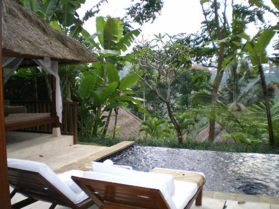 Komaneka at Tanggayuda: Our private plunge pool