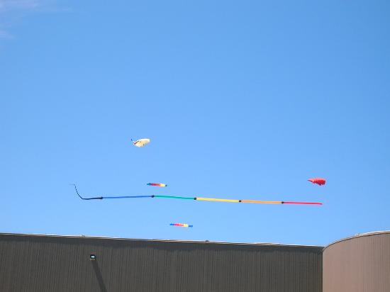 Lincoln City, OR: Kites on the beach