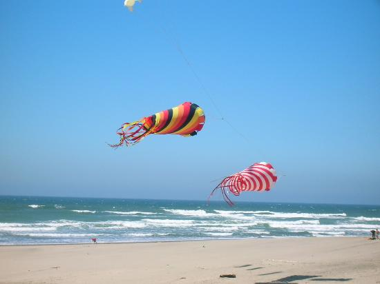 Lincoln City, OR: More kites on the beach