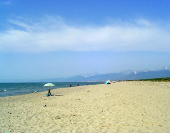 Fattoria di Migliarino: nearby beach