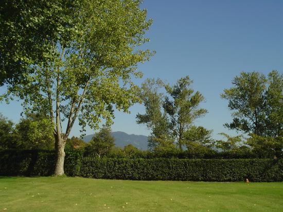Fattoria di Migliarino: view from front lawn