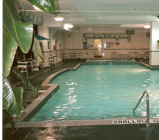 แมร์ริออทท์ ไนแองการ่าฟอลส์วิว โฮเต็ล & สปา: The Indoor Pool