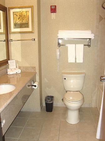 Holiday Inn Express & Suites - Gunnison: Bathroom - HI Express