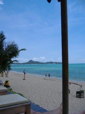 Aloha Resort: beach at the hotel
