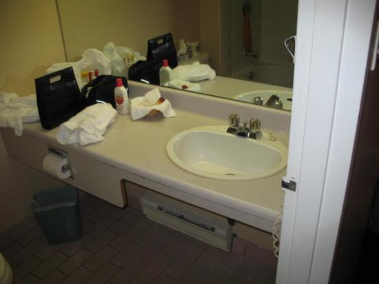 Adam's Airport Inn: Bathroom shot #1