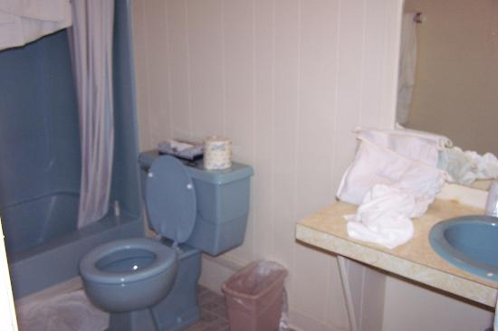 Sea View Motel: bathroom in double