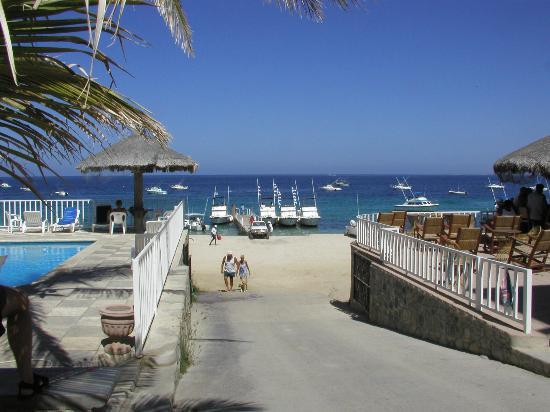 Martin Verdugo's Beach Resort: flags mean fish on the east-cape