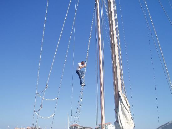 Patricia Belle - Sail Bandido: First mate Brad. Not sure what he was doing up there?