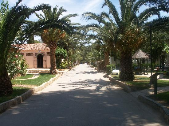 Camping La Torre del Sol: Main drive with accomodations to sides