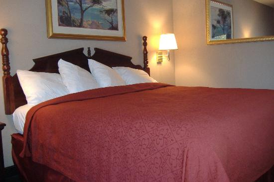 Quality Inn Ocean Springs: bed