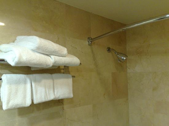 Four Points by Sheraton San Diego: Shower head with strong pressure