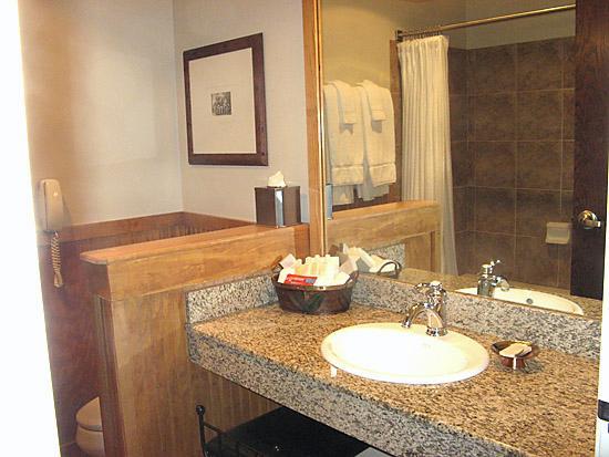 The Hotel Telluride : Bathroom
