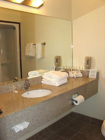 Holiday Inn Express Suites Alamosa: Bathroom