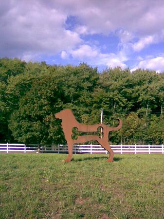 Haverhill, MA: The Dog