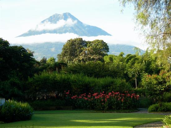 Quinta de las Flores: Grounds, with volcano nearby