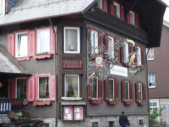 Hotel-Landgasthof Falken: Hôtel Falken (Faucon)
