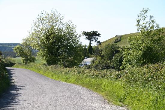 Road leading out of Glandore