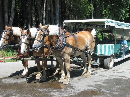 Mackinac Island Carriage Tours: Second carriage