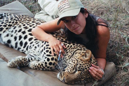 Shamwari Game Reserve Lodges: Javiera Gil R. Veterinary, Chile.