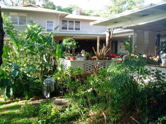 Diamond Head Bed And Breakfast: Garden view